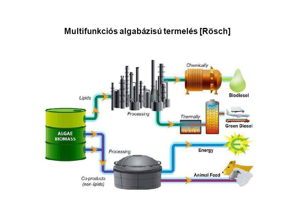 Multifunkciós algabázisú termelés [Rösch]